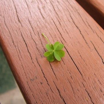 La consideración de buena o mala suerte es un asunto personal, no depende del azar.